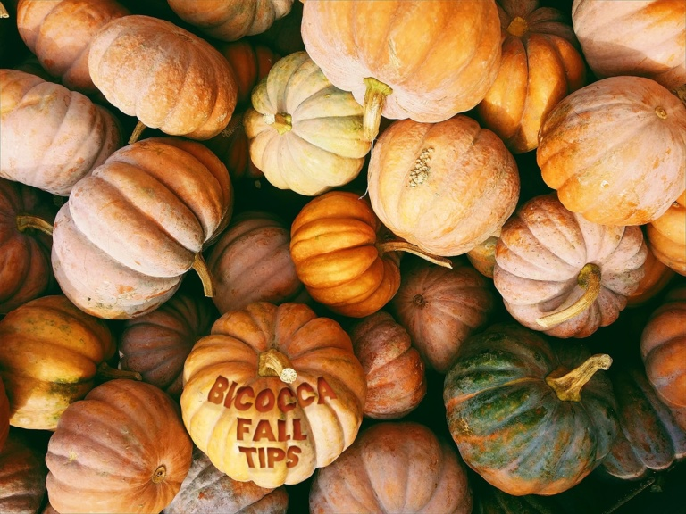 Bicocca Fall Tips