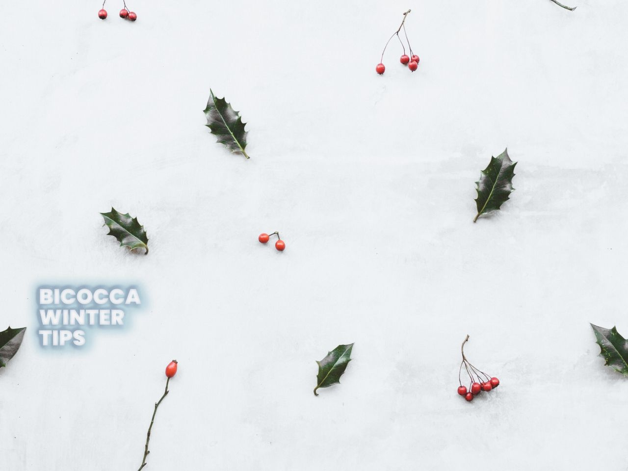 Bicocca Winter Tips
